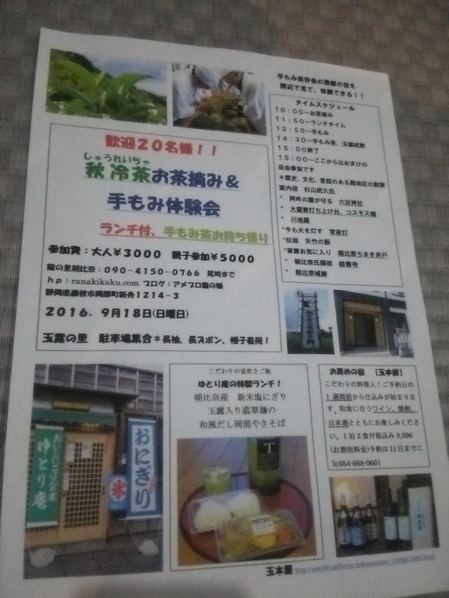 朝比奈(岡部)でお茶手もみ体験開催します!