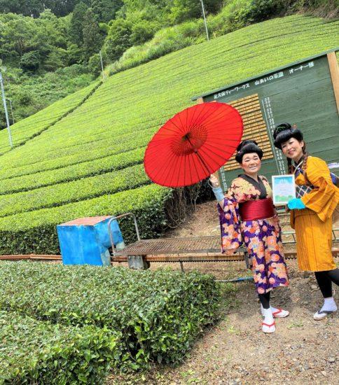 茶畑オーナーです!